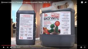 dachnye-sovety-s-galinoj-staroselcevoj-mart-2016-31