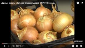 Дачные советы с Галиной Старосельцевой 2017-09 Февраль